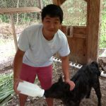 David Song ('15) at Dragon's Eye Learning Center.