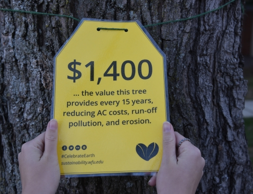 Tree Tags on Campus Mark 2018 Earth Week Celebration