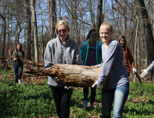 Over 100 Team Up for Earth Week Service Project