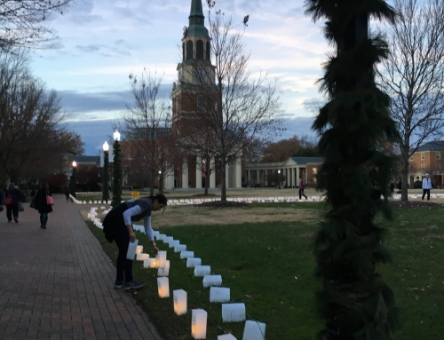 Reusable Luminaries Line the Quad this Holiday Season, Updating a Wake Forest Tradition